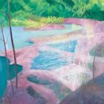 2015 水の華