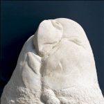 100×90×140cm 竜山石